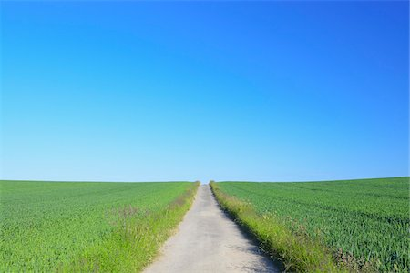 Road through grain field, Hesse, Germany, Europe Stock Photo - Premium Royalty-Free, Code: 600-06841704