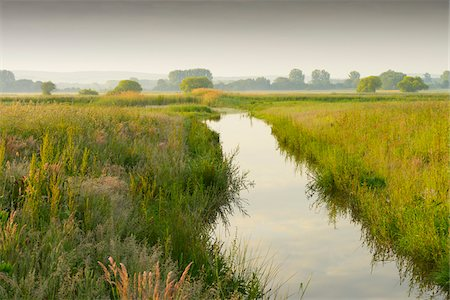 streams scenic nobody - Wetland in morning light, Hesse, Germany, Europe Stock Photo - Premium Royalty-Free, Code: 600-06841701