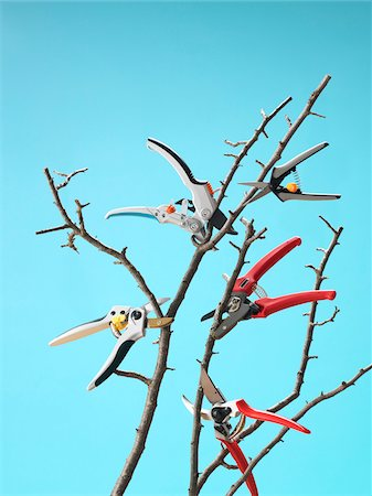 Pruners Cutting Branches while Floating in Mid Air, Studio Shot Stock Photo - Premium Royalty-Free, Code: 600-06895070