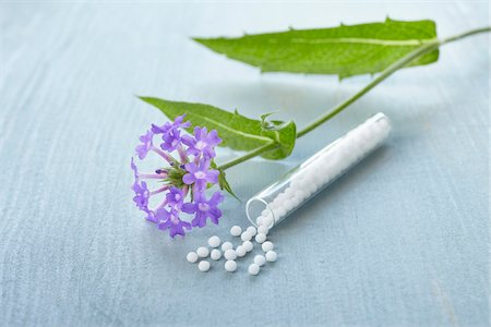 pharmaceutical plant - Still life of Bach flowers (Vervain) and vial of globules, Germany Stock Photo - Premium Royalty-Free, Code: 600-06899784
