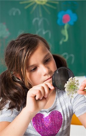 preteen girl pigtails - Girl in classroom examining flower with magnifying glass, Germany Stock Photo - Premium Royalty-Free, Code: 600-06899894