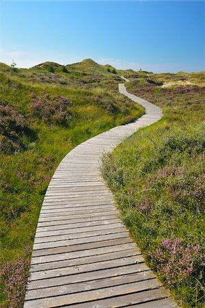 scenic view - Wooden Walkway through Dunes, Summer, Norddorf, Amrum, Schleswig-Holstein, Germany Stock Photo - Premium Royalty-Free, Code: 600-06964215