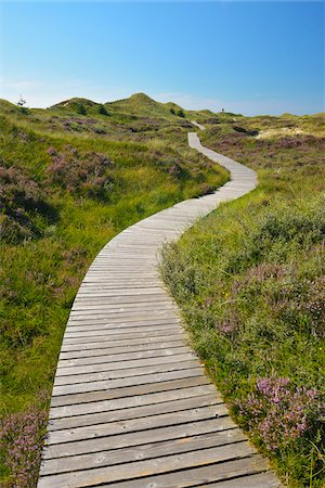 scenic view - Wooden Walkway through Dunes, Summer, Norddorf, Amrum, Schleswig-Holstein, Germany Stock Photo - Premium Royalty-Free, Code: 600-06964215