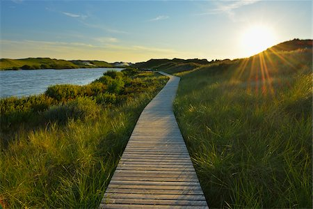 scenic view - Boardwalk through Dunes, Summer, Wittduen, Amrum, Schleswig-Holstein, Germany Stock Photo - Premium Royalty-Free, Code: 600-06964220
