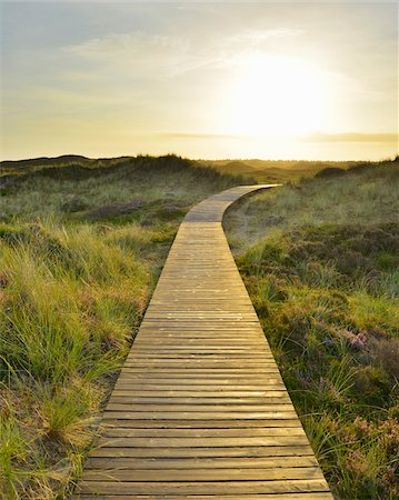 Wooden Walkway through Dunes with Sun, Summer, Norddorf, Amrum, Schleswig-Holstein, Germany Stock Photo - Premium Royalty-Free, Code: 600-06964234