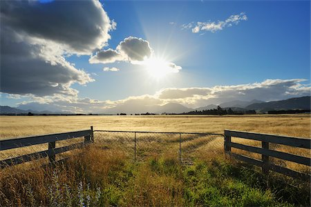 streams scenic nobody - Cattle Gate with Sun in the Summer, Seddon, Marlborough, South Island, New Zealand Stock Photo - Premium Royalty-Free, Code: 600-06961828