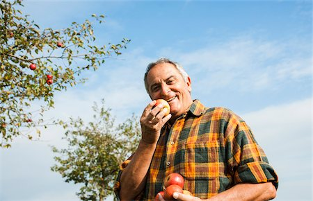 single fruits tree - Portrait of farmer holding apples in orchard, Germany Stock Photo - Premium Royalty-Free, Code: 600-07148346