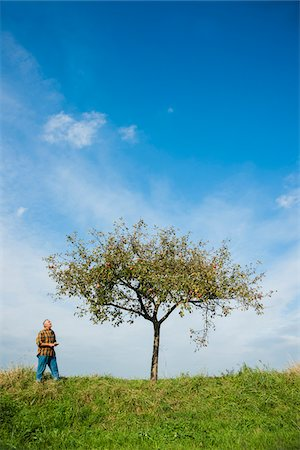 single fruits tree - Farmer standing in field, inspecting apple tree, Germany Stock Photo - Premium Royalty-Free, Code: 600-07148340