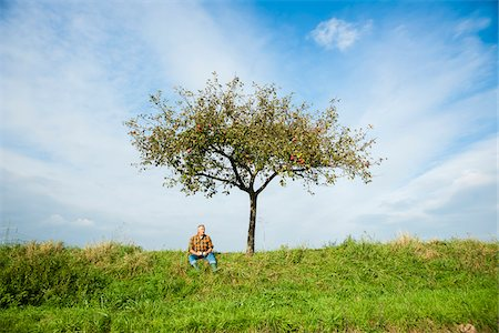 Farmer sitting on hill next to apple tree, eating apple, Germany Stock Photo - Premium Royalty-Free, Code: 600-07148342