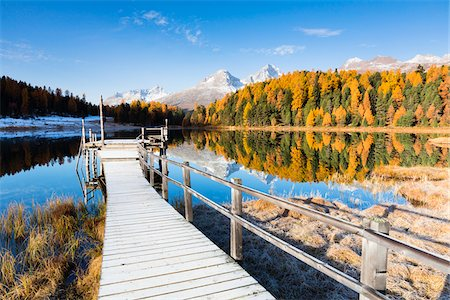fall trees lake - Jetty at Lake Staz with Larch Trees and Snow Covered Piz Nair Reflected in it in Autumn, Canton of Graubunden, Switzerland Stock Photo - Premium Royalty-Free, Code: 600-07143717