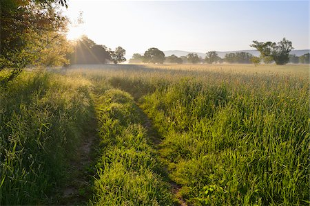 streams scenic nobody - Path in meadow with sun in Spring, Kahl, Alzenau, Bavaria, Germany Stock Photo - Premium Royalty-Free, Code: 600-07156455