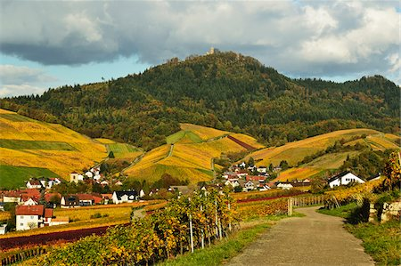 Vineyard Landscape, Neuweier Village and Yburg Castle on Hilltop, Ortenau, Baden Wine Route, Baden-Wurttemberg, Germany Stock Photo - Premium Royalty-Free, Code: 600-07199370