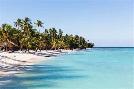 Coconut palm trees and white beach by turquoise clear water, Del Este National Park (Parque Nacional del Este), Dominican Republic, Caribbean Stock Photo - Premium Royalty-Free, Code: 600-07311198