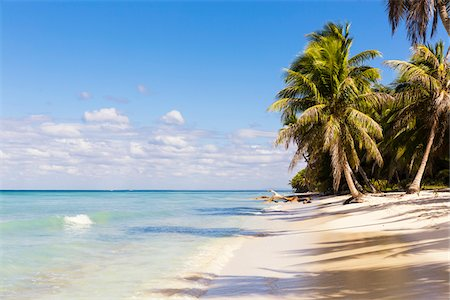 palm - Coconut palm trees and white beach by turquoise clear water, Del Este National Park (Parque Nacional del Este), Dominican Republic, Caribbean Stock Photo - Premium Royalty-Free, Code: 600-07311205