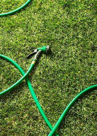 Garden Hose on Grass Stock Photo - Premium Royalty-Free, Code: 600-07311267