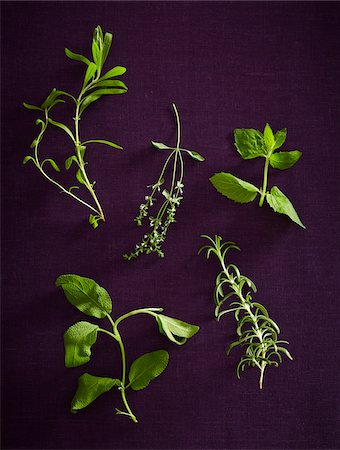five - Overhead View of Herbs, Studio Shot Stock Photo - Premium Royalty-Free, Code: 600-07311268