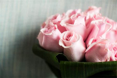 Close-up of Bouquet of Pink Roses Stock Photo - Premium Royalty-Free, Code: 600-07451036