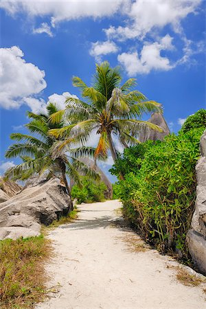 Footpath through Rocks and Palm Trees, Anse Source d´Argent, La Digue, Seychelles Stock Photo - Premium Royalty-Free, Code: 600-07453861