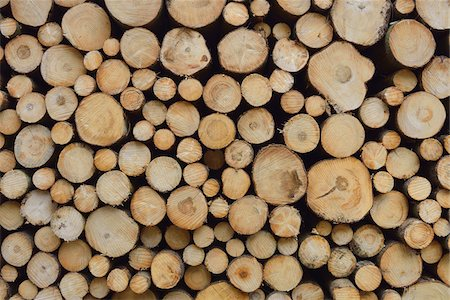 Stack of Spruce Logs, Spessart, Hesse, Germany, Europe Stock Photo - Premium Royalty-Free, Code: 600-07487455