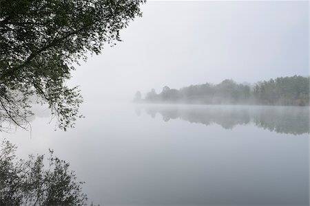 fog (weather) - Lake in the Morning with Mist, Spring, Mondfeld, Mainfranken, Franconia, Baden-Wurttemberg, Germany Stock Photo - Premium Royalty-Free, Code: 600-07599938