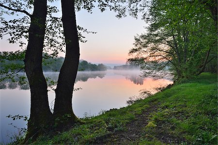 Shore with Trees at River Main in the Dawn, Spring, Dorfprozelten, Spessart, Franconia, Bavaria, Germany Stock Photo - Premium Royalty-Free, Code: 600-07599956
