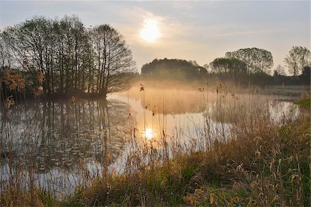 Fishing Pond at Sunrise, Gunzenau, Grebenhain, Vogelsberg District, Hesse, Germany Stock Photo - Premium Royalty-Free, Code: 600-07599974