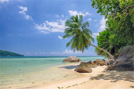 Rocks and Palm Trees at Beach, Anse a la Mouche, Mahe, Seychelles Stock Photo - Premium Royalty-Free, Code: 600-07653905