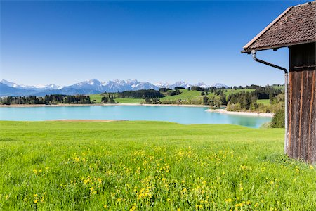 Lake Forggensee with Ammergau Alps and Tannheim Range in the background in Spring, Bavaria, Germany Stock Photo - Premium Royalty-Free, Code: 600-07738598