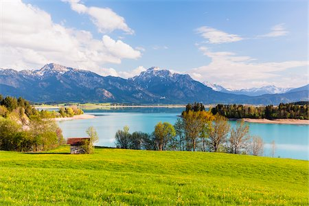 scenic and spring (season) - Lake Forggensee with Ammergau Alps and Tannheim Range in the background in Spring, Bavaria, Germany Stock Photo - Premium Royalty-Free, Code: 600-07738605