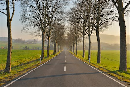 Country road in the morning, Echte, Kalefeld, Harz, Lower Saxony, Germany Stock Photo - Premium Royalty-Free, Code: 600-07802690