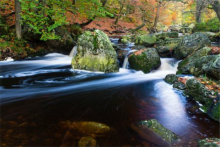 Autumn colours at the wild river La Hoegne, near the High Fens (Hautes Fagnes), Ardennes Forest, Walloon Region, Belgium Stock Photo - Premium Royalty-Free, Code: 600-07844369