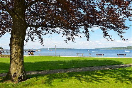 shadow - Lakeside with Benches and Tree, Diessen am Ammersee, Lake Ammersee, Fuenfseenland, Upper Bavaria, Bavaria, Germany Stock Photo - Premium Royalty-Free, Code: 600-07844413