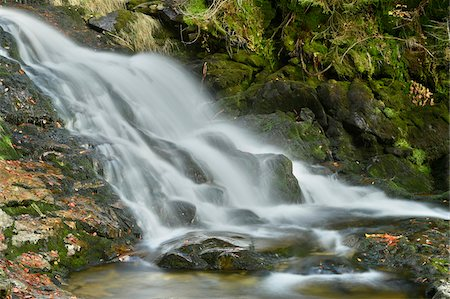 Close-up view of waterfall and stream in autumn, Bavarian Forest National Park, Bodenmais, Regen District, Bavaria, Germany Stock Photo - Premium Royalty-Free, Code: 600-07911222