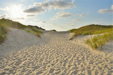 Path through the Dunes to the Beach with Sun, Summer, Norderney, East Frisia Island, North Sea, Lower Saxony, Germany Stock Photo - Premium Royalty-Free, Code: 600-07945214