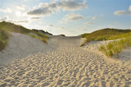 Path through the Dunes to the Beach with Sun, Summer, Norderney, East Frisia Island, North Sea, Lower Saxony, Germany Stock Photo - Premium Royalty-Free, Code: 600-07945215