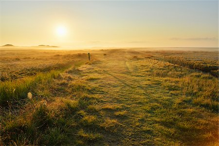 streams scenic nobody - Countryside with Morning Mist in Summer, Norderney, East Frisia Island, North Sea, Lower Saxony, Germany Stock Photo - Premium Royalty-Free, Code: 600-07945240