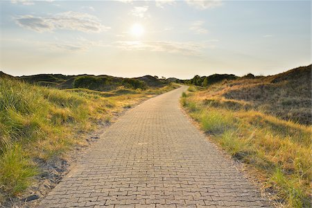 Dunes Path with Sun in Summer, Norderney, East Frisia Island, North Sea, Lower Saxony, Germany Stock Photo - Premium Royalty-Free, Code: 600-07945355