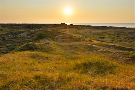 View over Dunes at Sunset, Norderney, East Frisia Island, North Sea, Lower Saxony, Germany Stock Photo - Premium Royalty-Free, Code: 600-07945360