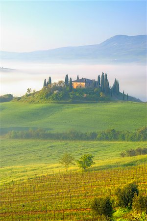 Podere Belvedere near San Quirico d'Orcia, Val d'Orcia, Siena, Tuscany, Italy Stock Photo - Premium Royalty-Free, Code: 600-07966037