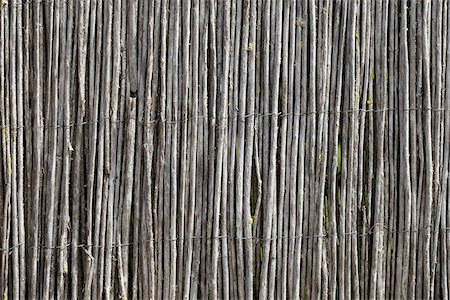 Close-up of Fence made from Thin Wooden Sticks, Royan, Charente-Maritime, France Stock Photo - Premium Royalty-Free, Code: 600-07966210
