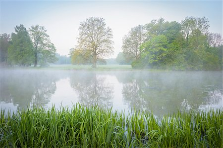 scenic and spring (season) - Lake on Misty Morning in Spring, Park Schonbusch, Aschaffenburg, Lower Franconia, Bavaria, Germany Stock Photo - Premium Royalty-Free, Code: 600-08007011