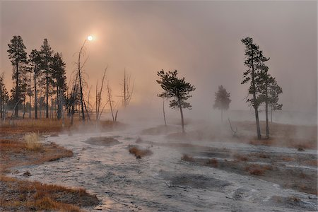 Small Stream with Rising Steam near Sunrise, Firehole Lake Drive, Yellowstone National Park, Wyoming, USA Stock Photo - Premium Royalty-Free, Code: 600-08002207