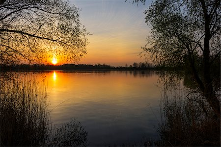 Trees and lake at Sunrise in Early Spring, Riedstadt, Hesse, Germany Stock Photo - Premium Royalty-Free, Code: 600-08002595