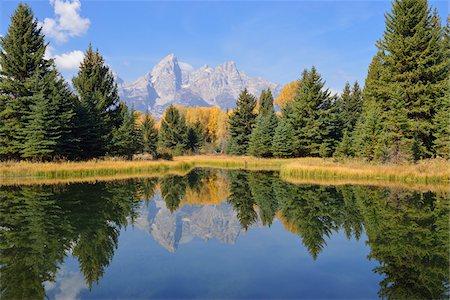 Schwabacher Landing with Teton mountain range in background, autumn, Snake River, Jackson Hole, Grand Teton National Park, Wyoming, USA Stock Photo - Premium Royalty-Free, Code: 600-08026155