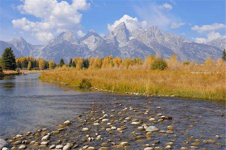 Schwabacher Landing with Teton mountain range in background, autumn, Snake River, Jackson Hole, Grand Teton National Park, Wyoming, USA Stock Photo - Premium Royalty-Free, Code: 600-08026157