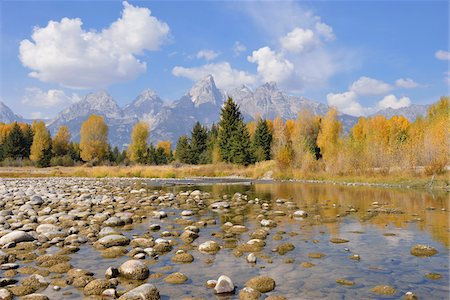 Schwabacher Landing with Teton mountain range in background, autumn, Snake River, Jackson Hole, Grand Teton National Park, Wyoming, USA Stock Photo - Premium Royalty-Free, Code: 600-08026158