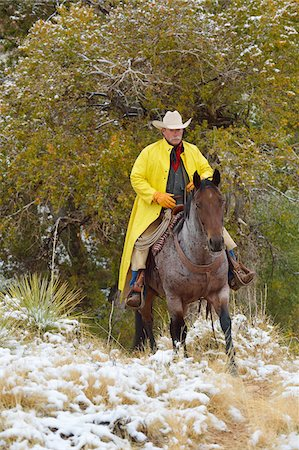 Cowboy Riding Horse in Snow, Rocky Mountains, Wyoming, USA Stock Photo - Premium Royalty-Free, Code: 600-08026184