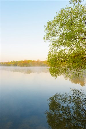 scenic and spring (season) - Lake and Trees in Early Morning Light, Lake Erlensee, Hanau, Hesse, Germany Stock Photo - Premium Royalty-Free, Code: 600-08082795
