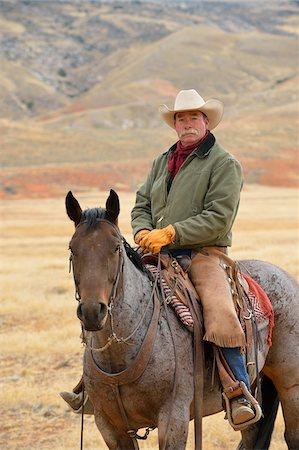 Cowboy Riding Horse, Shell, Wyoming, USA Stock Photo - Premium Royalty-Free, Code: 600-08082916