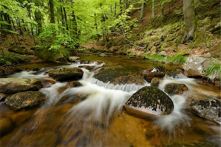 streams scenic nobody - Ilse, Ilse Valley. Heinrich Heine Trail, Ilsenburg, Harz National Park, Harz, Saxony-Anhalt, Germany Stock Photo - Premium Royalty-Free, Code: 600-08082984